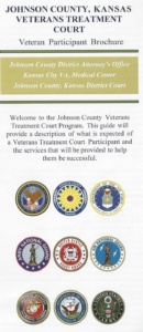 Veterans Treatment Court Brochure